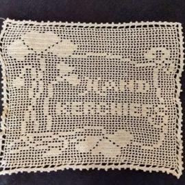 Vintge Hand Fillet Crochet Handkerchief Cover Edwardian Flower Motif